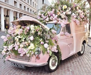 beauty, car, and flowers image