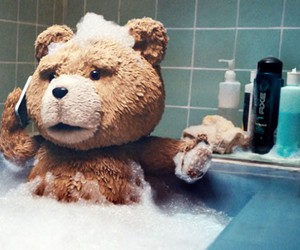TED and bear image