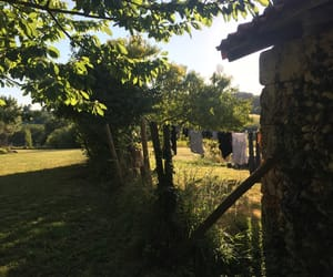 aesthetic, farm, and france image