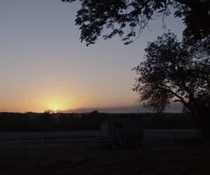 beautiful, sunrise, and trees image