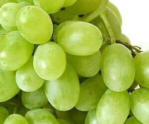 grapes, uvas, and pinterest image