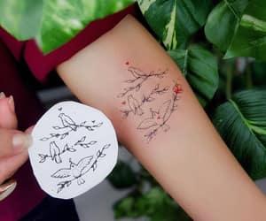 animal, inked, and bird image