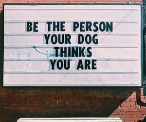 quotes, dog, and person image