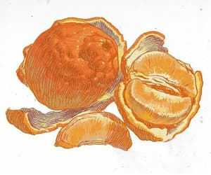 bittersweet, tangerine, and fruit image