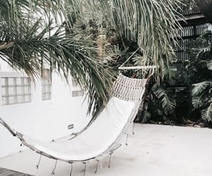 hammock, palm trees, and sand image