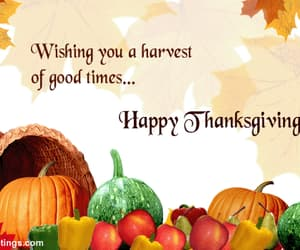 happy thanksgiving cards image