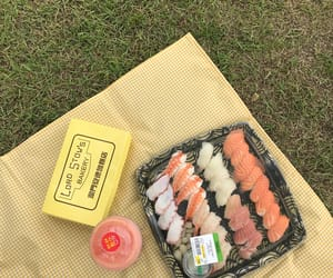 japan, japanese food, and picnic image