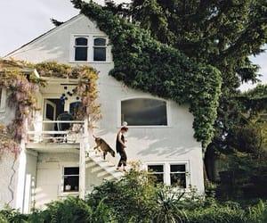 house, dog, and home image