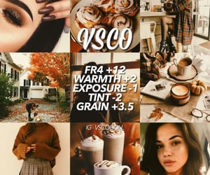 aesthetic, autumn, and bambi image
