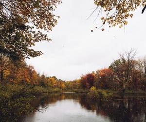 adventure, autumn, and coffee image