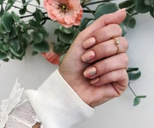 flowers, hand, and nail image