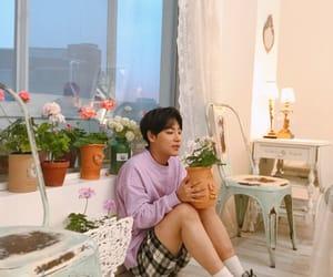 flowers, 온앤오프, and kpop image