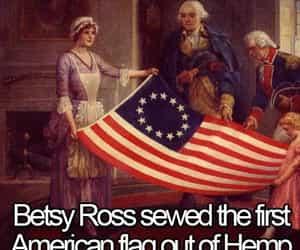George Washington, hemp, and marijuana image