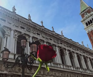 italy, red roses, and venice image