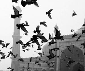 النبي محمد, مَسجَد, and ذنوب image
