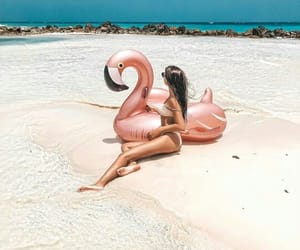 beach, fashion, and flamingos image