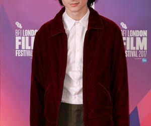 actor and timothee chalamet image