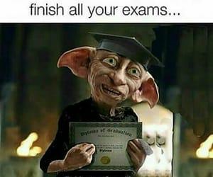 exam, harry potter, and dobby image