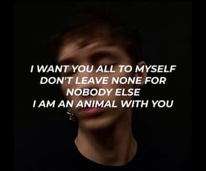 animal, bloom, and Lyrics image