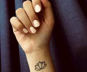 black, flower, and lotus image