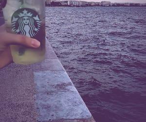 explore, green tea, and sea image
