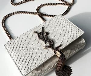 grey, luxury, and snake image