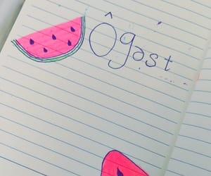 journal, summer, and watermellon image