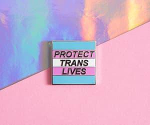 lgbtq, lives, and protect image