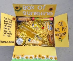 box, diy, and sunflower image