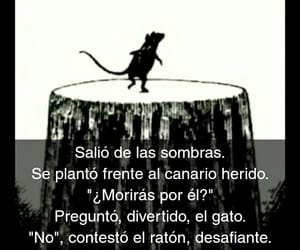 amor, frases, and gato image