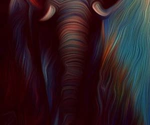 animal art, colorful, and elephant image