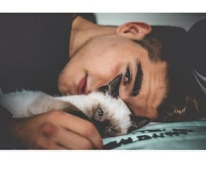 amazing, boy, and cat image