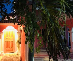 light up, mexico, and pink image