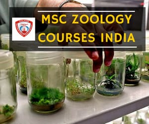 msc zoology courses india image