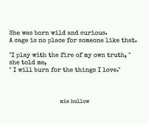 quotes, wild, and curious image