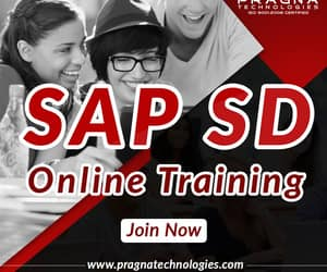 sap sd and sap sd online image