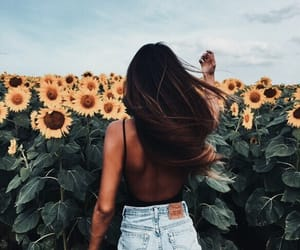 🌻 sunflowers