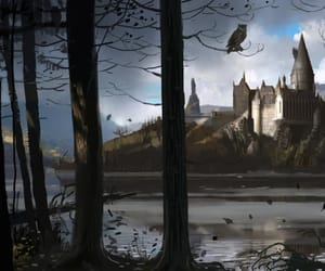 article, ginny weasley, and harry potter image