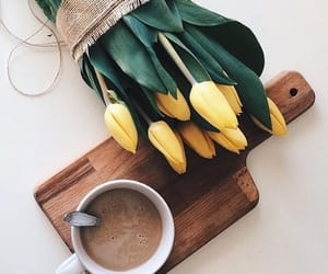 flower, coffee, and photography image