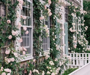 aesthetic, decor, and garden image