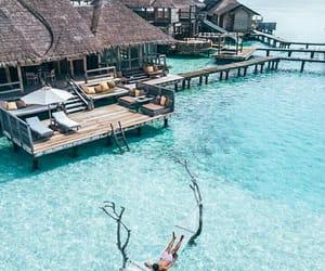 beach, hammock, and paradise image