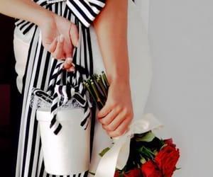 belleza, Detalles, and elegancia image