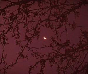 moon, aesthetic, and red image