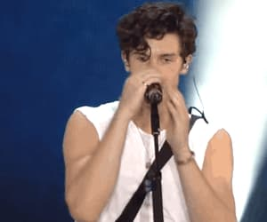 gif, love, and shawn mendes image