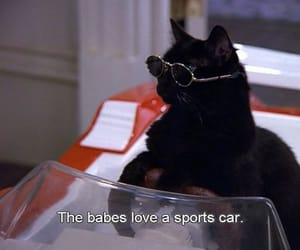 cat, salem, and 90s image