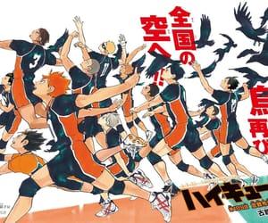 anime, haikyuu, and volleyball image