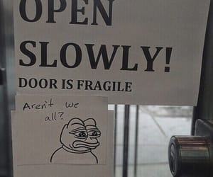 fragile, funny, and meme image