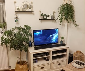 ambiance, decor, and green image