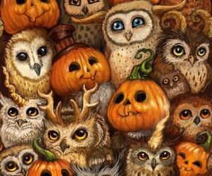 Halloween, autumn, and owl image