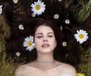 lana del rey, aesthetic, and flowers image